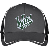 Iowa Wild Colorblock Mesh Back Cap