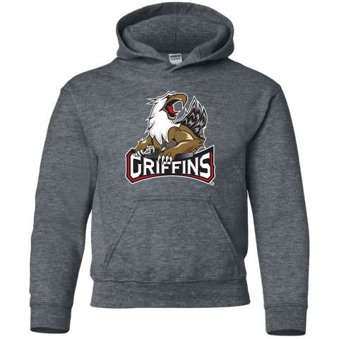 Grand Rapids Griffins Primary Logo Youth Pullover Hoodie (sidewalk sale)