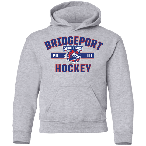 Bridgeport Sound Tigers Youth Established Pullover Hoodie