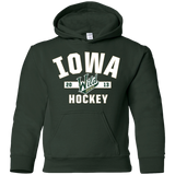 Iowa Wild Youth Established Pullover Hoodie
