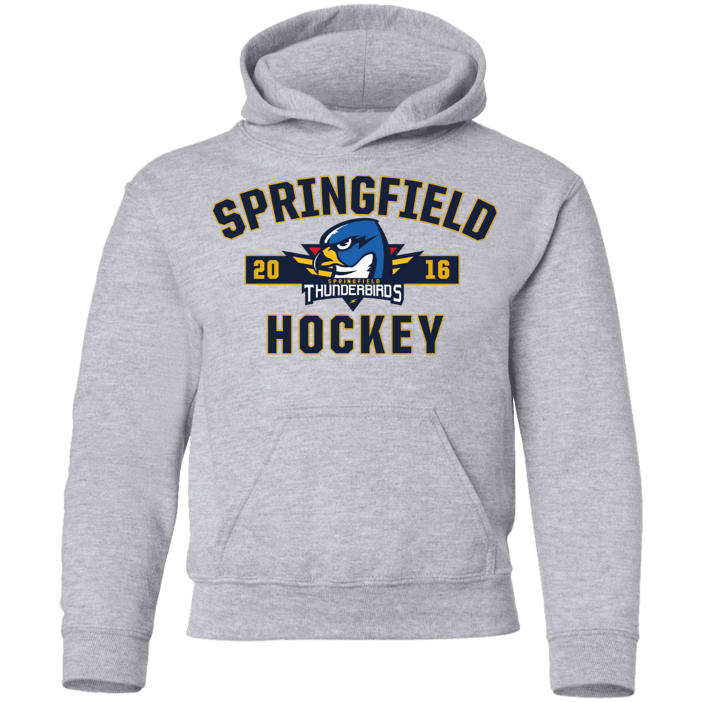 Springfield Thunderbirds Youth Established Pullover Hoodie