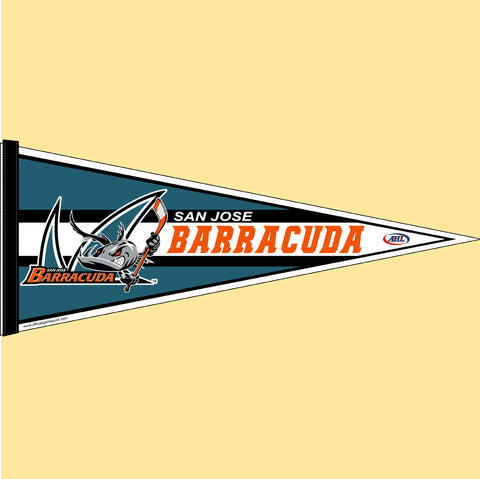 San Jose Barracuda Team Pennant