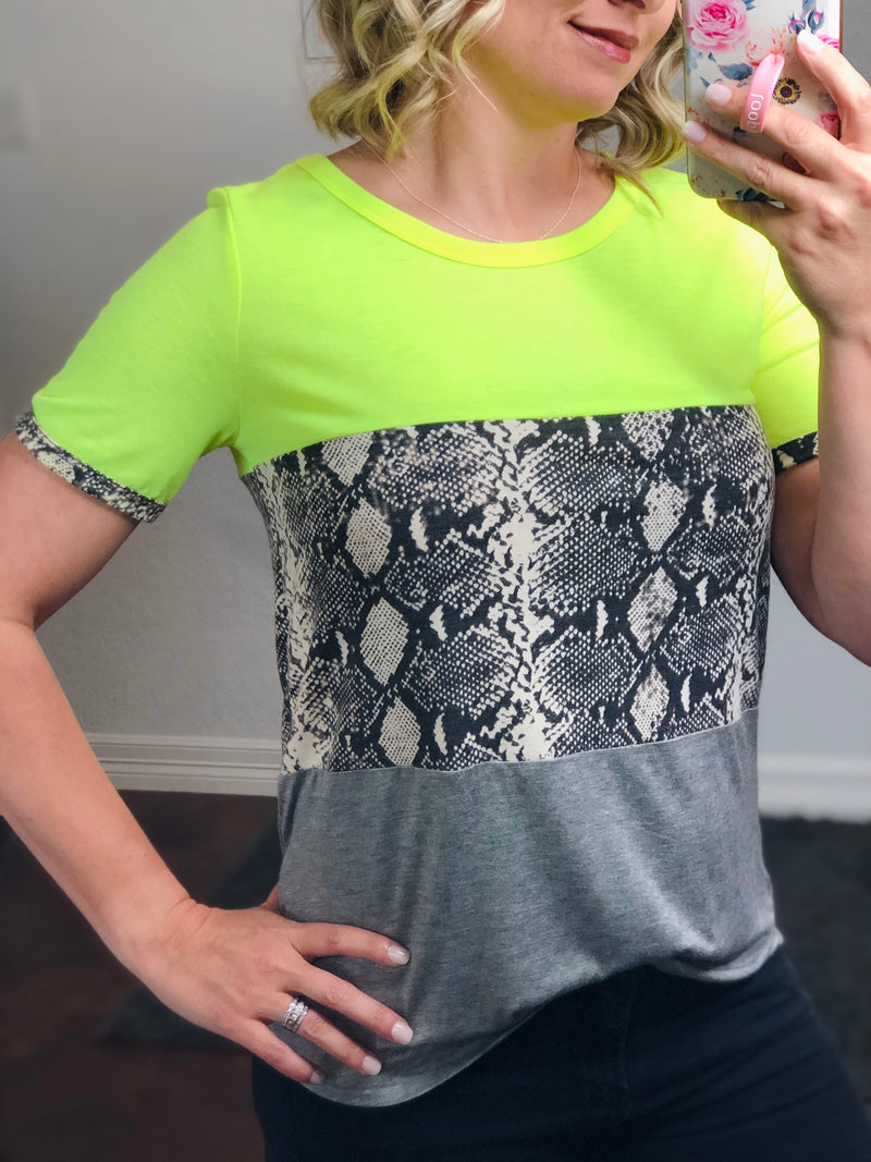 Fluorescent Snake Color Block Top