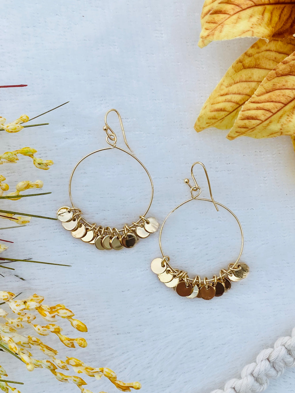 Round Drop Earrings w/ Coin Dangles