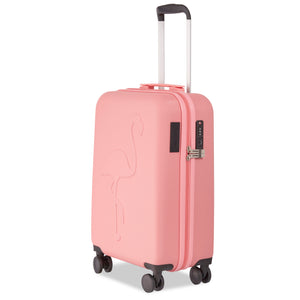 Flamingo Pink USB Cabin Case