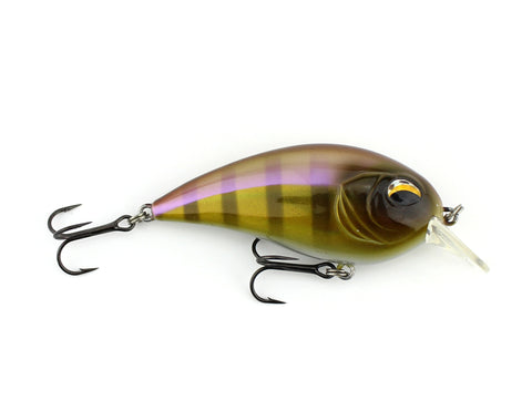 CD2 Square Bill Crank Bait