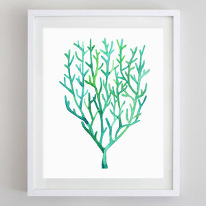 Coral Watercolor Print