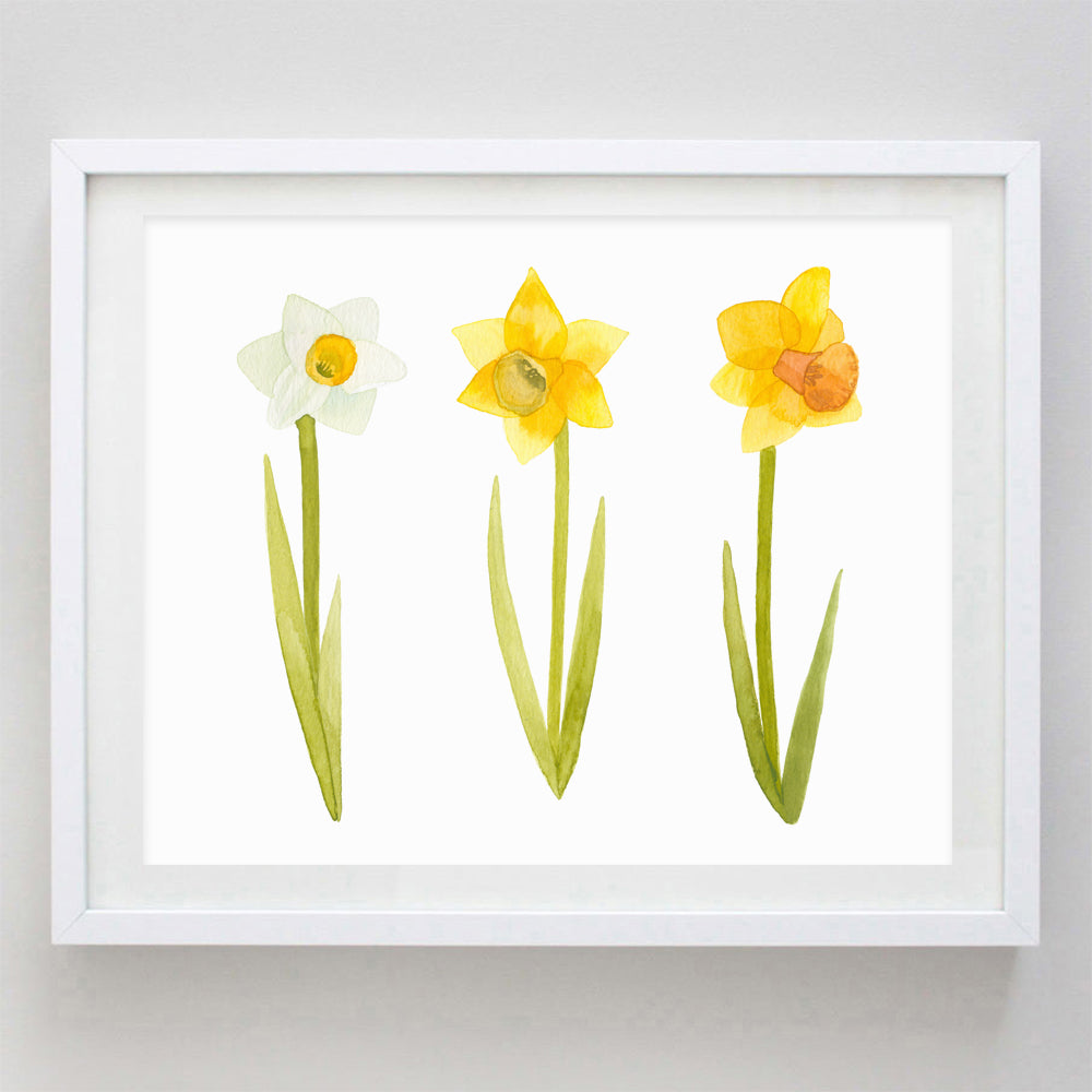 Daffodil Watercolor Print