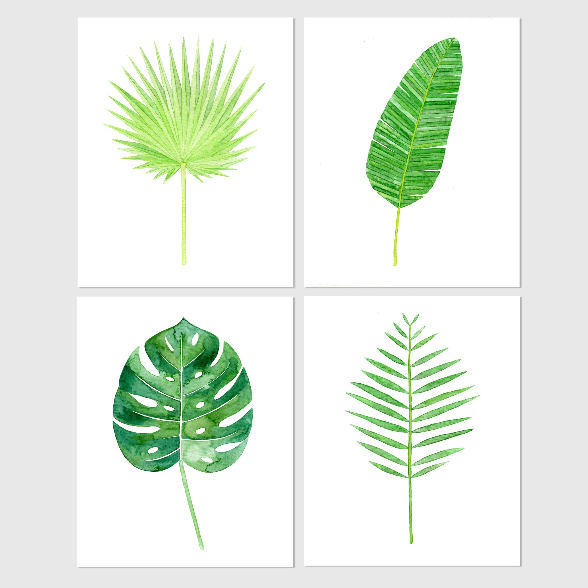Banana Leaf Tropical Botanical Watercolor Print Carly Rae Studio Tropical green branches, leaves and orange flowers. usd