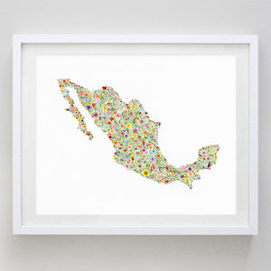 art print - mexico floral watercolor print - carly rae studio