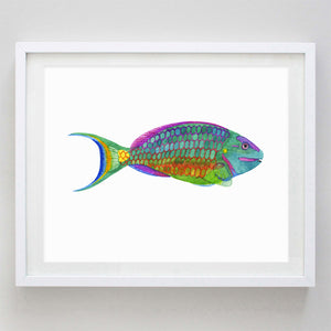 Tropical Fish 2 (Angel Fish) Watercolor Print
