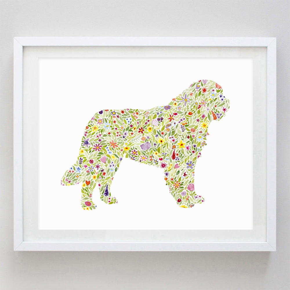 St. Bernard Floral Watercolor Print