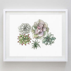 art print - succulent watercolor print - carly rae studio