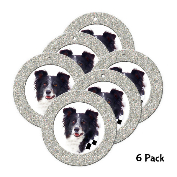 Mini Magnetic Glitter Christmas Photo Ornaments - 6-pack, Round Silver
