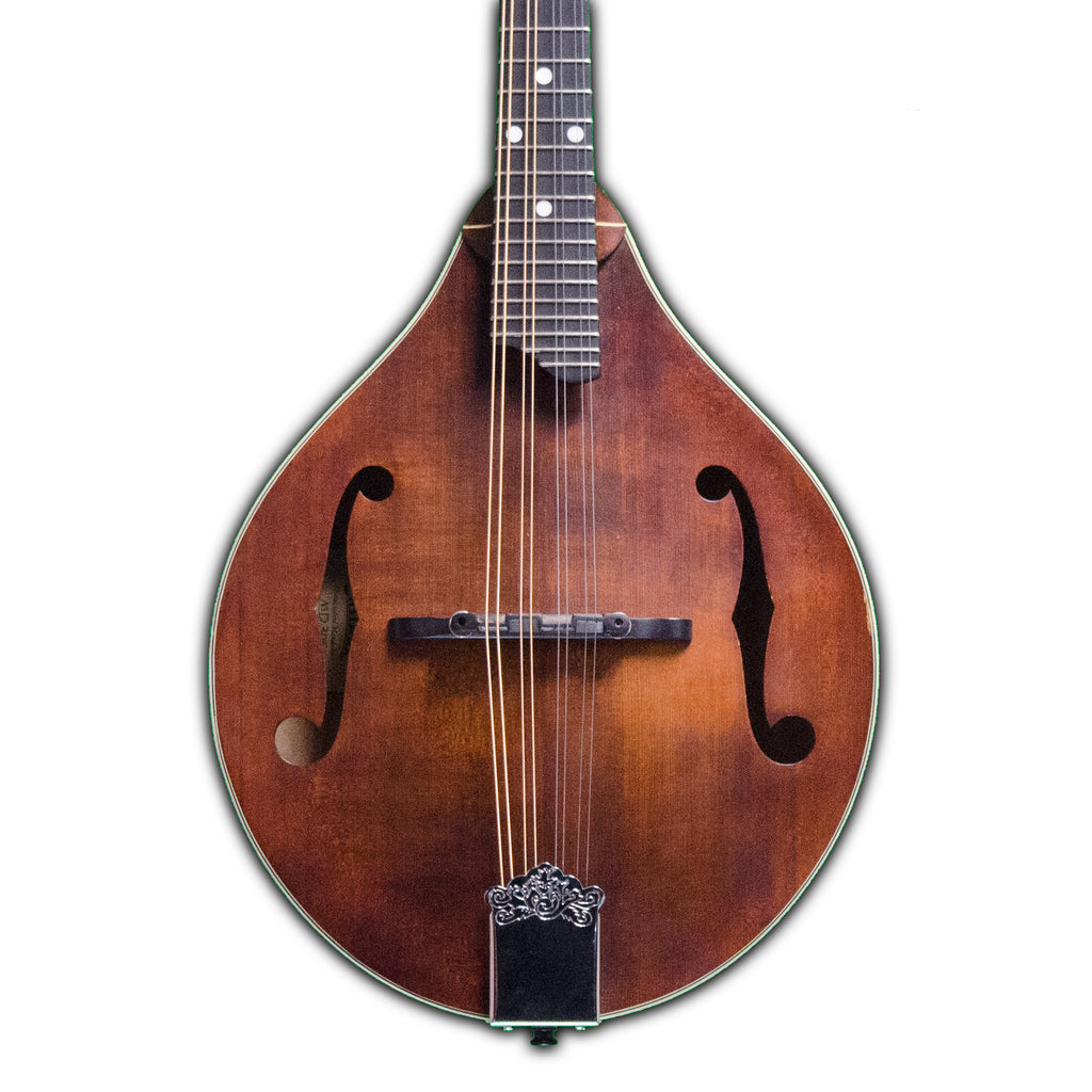 Eastman MD305 Mandolin w/ Gigbag (Used - Recent)