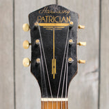 Harmony Patrician LH Conversion w/ EMG (Vintage - 1960s)