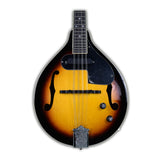 Fender FM-52E Mandolin (Used - Recent)