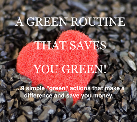 A Green Routine That Saves You Green Antonym Cosmetics