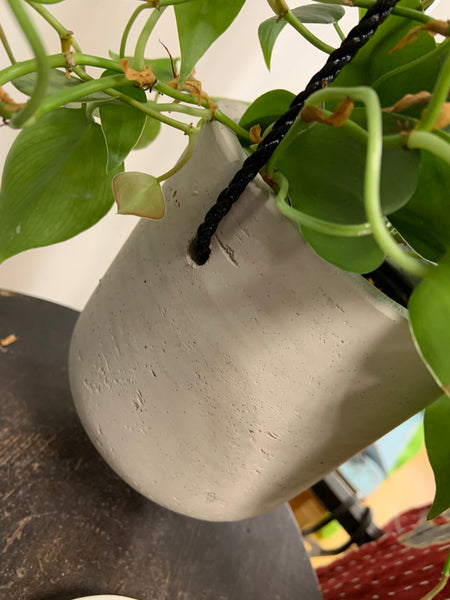 Small hanging grey planter