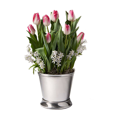 Tantalizing Tulips (Imported)