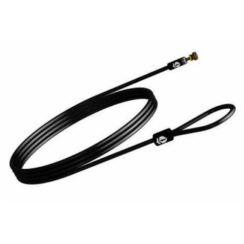 Gun Box Echo security tether cable