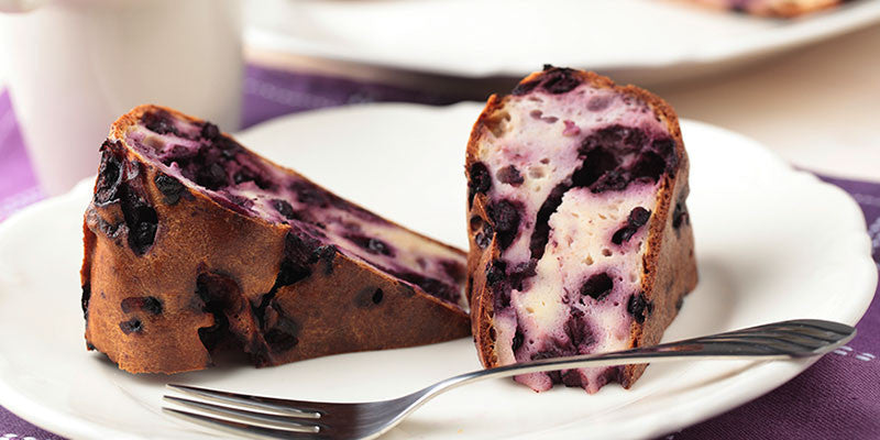 Syntha-6: Blueberry Protein Cheesecake