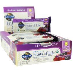Organic Fruits Of Life 64G Bars
