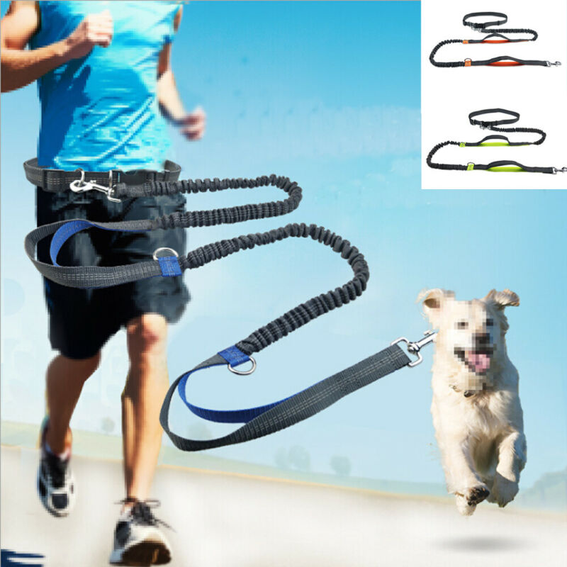 Hands-free Dog Leash/Heavy Duty