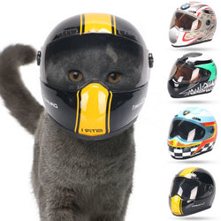 Pet Helmet