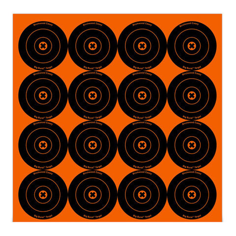 "Big Burst 3""- 48 Targets"