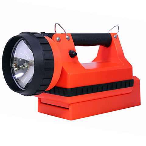 Dual Lamp Vehicle Mount, Orange