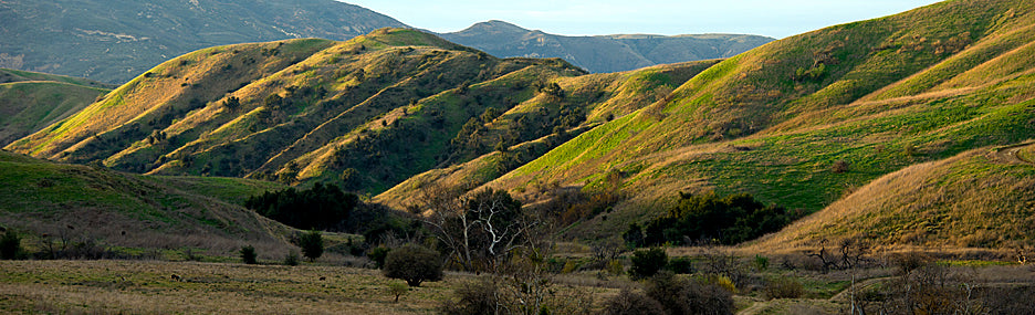 Exploring Chino Hills State Park on your cyclocross bike