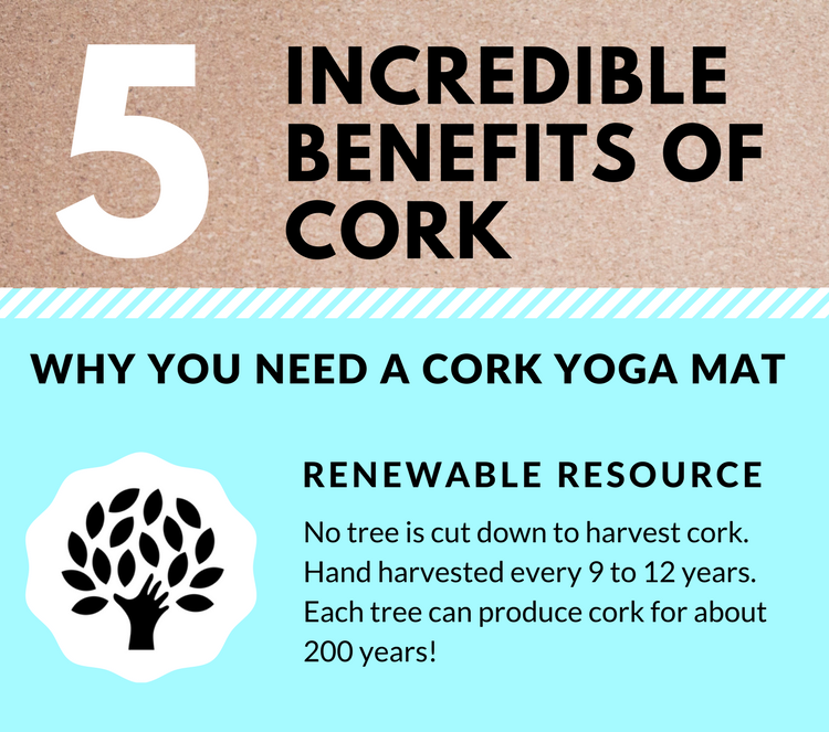 5 INCREDIBLE BENEFITS OF CORK - Why you need a cork yoga mat!