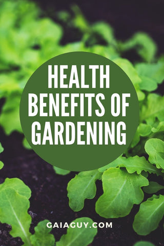 Health Benefits of Gardening (Now More Than Ever)