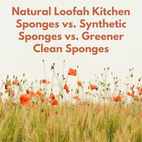 Natural Loofah Kitchen Sponges vs. Synthetic Sponges vs. Greener Clean Sponges