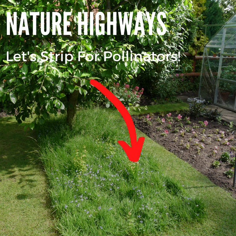 Let's Strip For Pollinators!