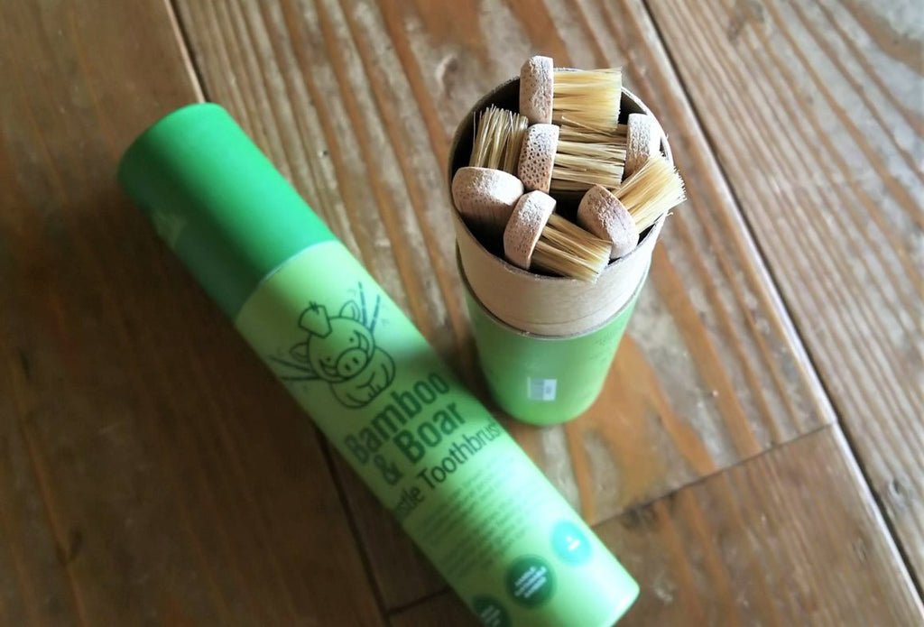 Gaia Guy's Bamboo and Boar Bristle Toothbrush - Biodegradable Toothbrush is big in Japan!