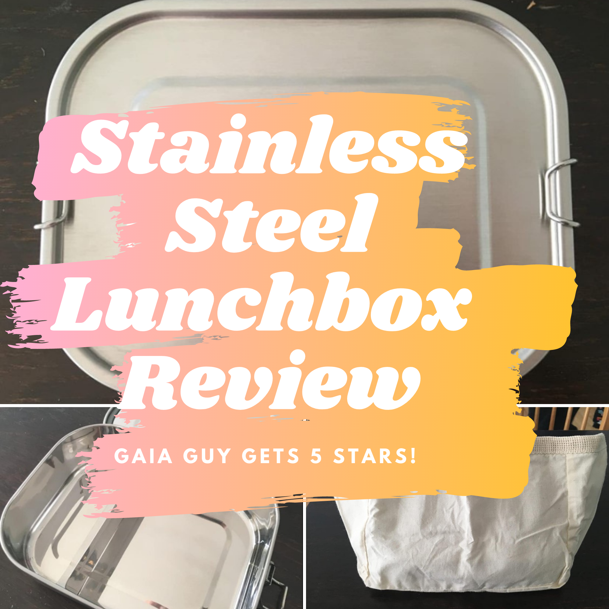 stainless steel lunchbox review