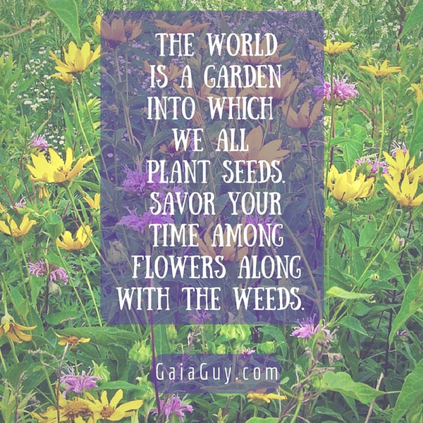 gaia guy power flowers and weeds