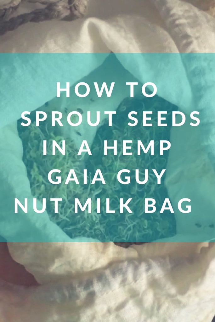 how to sprout seeds hemp sprout bag