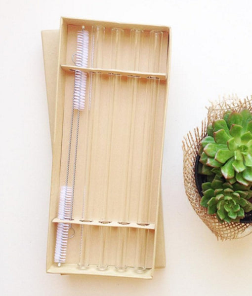 Reusable Glass Straws (9in x 12mm) - 4 Pack with 2 Cleaning Brushes