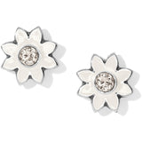 Jasmine Mini Post Earrings - Jewelry - SierraLily