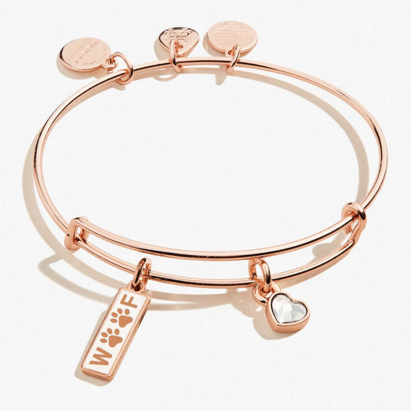 Alex and Ani Woof Duo Charm Bangle