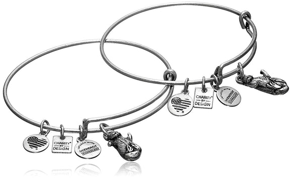 Alex and Ani Womens Charity by Design Side by Side Set of 2 Expandable Wire Bangles - Jewelry - SierraLily