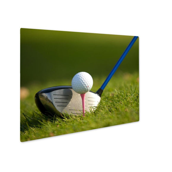 A Golf Club On A Golf Course - Metal Panel Print,-Metal Panel Print-LTM Endeavors Gifts