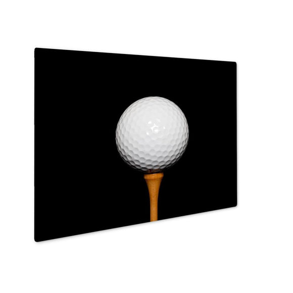 Metal Panel Print, Golf Ball On Teepeg - LTM Endeavors Gifts