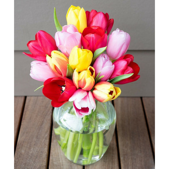 Sunny Tulips - 15 Stems-Flowers-LTM Endeavors Gifts