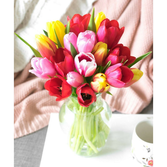 Sunshine Rainbow Tulips - 20 Stems-Flowers-LTM Endeavors Gifts