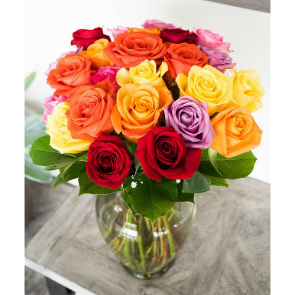 Two Dozen Mixed Color Roses-Flowers-LTM Endeavors Gifts