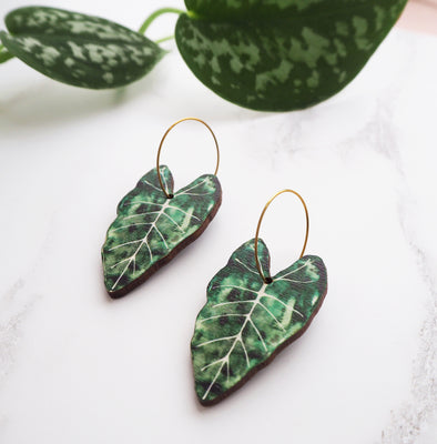 Alocasia Hoop Earrings
